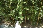 Pont de l'ascension : adoptez la zen attitude et venez nous rendre visite !!!