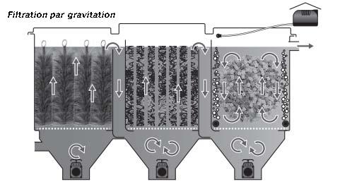 Aquadistri filtre pour bassin poly tech move 100 for Filtre pour petit bassin exterieur