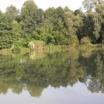 L'Arboretum de Châtillon-sur-Chalaronne