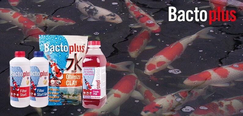 BACTOPLUS Tous les produits BACTOPLUS 5e5ae5af1559