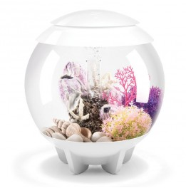 Aquarium BIORB Halo Blanc 15 MCR 15 L