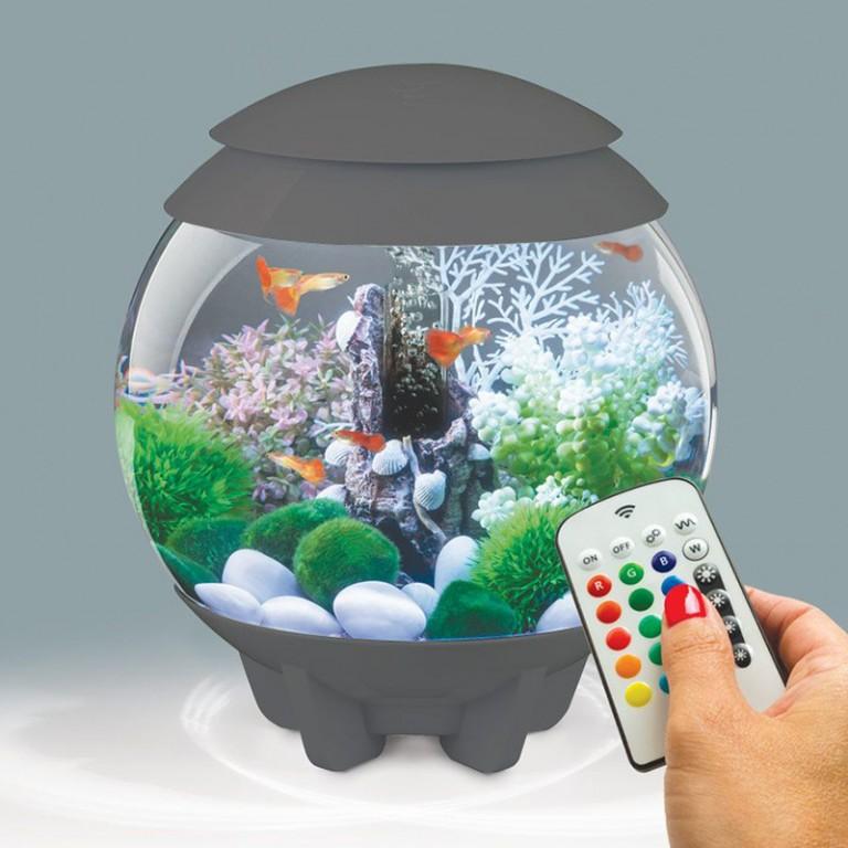 biorb aquarium biorb halo 15 mcr gris 15 l. Black Bedroom Furniture Sets. Home Design Ideas