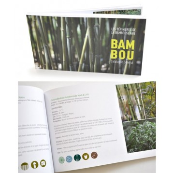 Livre Bambou