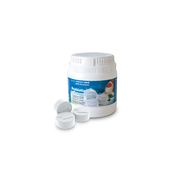 Probiokoï Probiotique effervescent ANTI-BACTERIEN