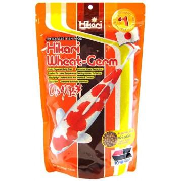Nourriture Hikari Wheat Germ medium 500 g