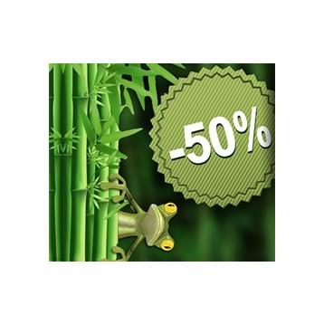 Bambous (notre sélection)