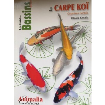 Schemas alimentation guide d 39 achat for Achat carpe koi occasion