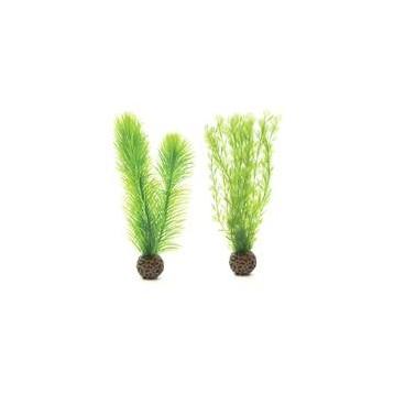 Biorb d cor aquarium biorb set de petites plantes vertes for Petites plantes vertes