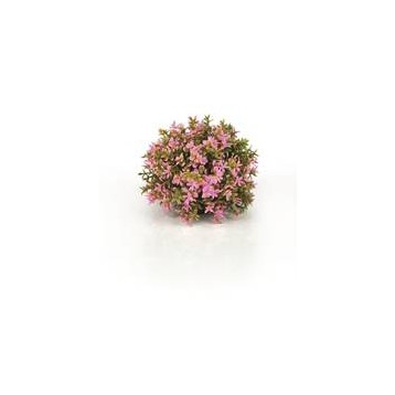 Décor Aquarium BIORB Boule Topiaire Rose