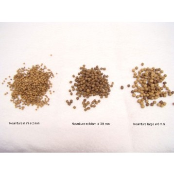Nourriture Koï 15 Kg extra 6-7 mm (recharge)