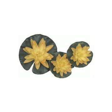 Nénuphar jaune 3 fleurs